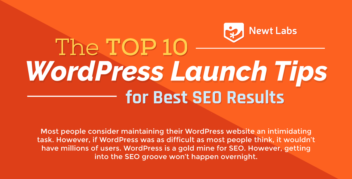 the top 10 wordpress launch tips for best seo results
