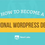 How to Become a Professional WordPress Developer (Infographic)