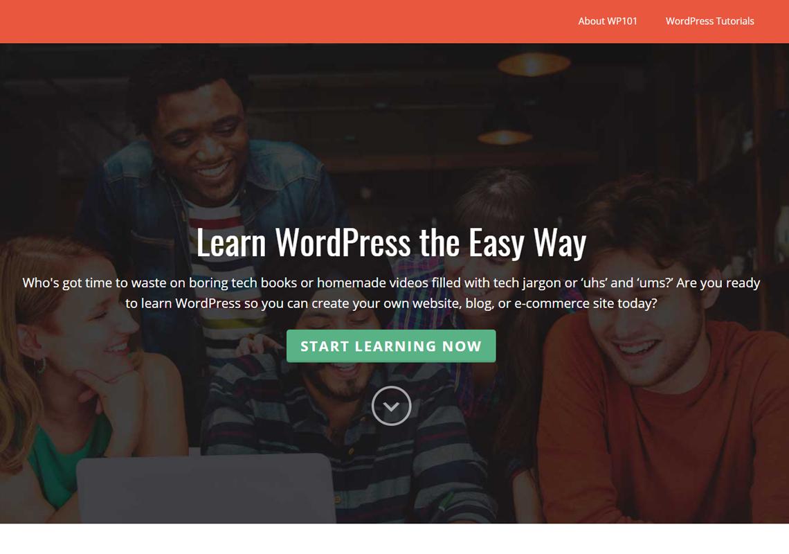 wp 101 website