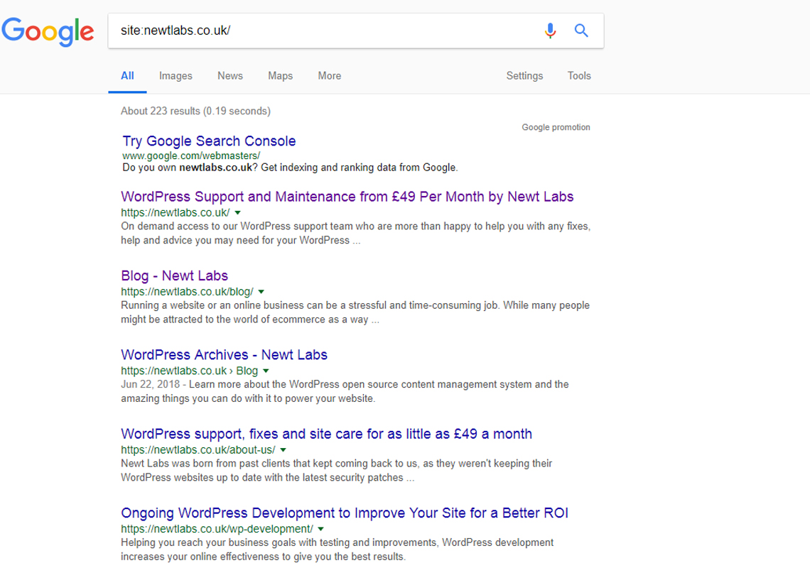 site indexation as seen in a list of google results